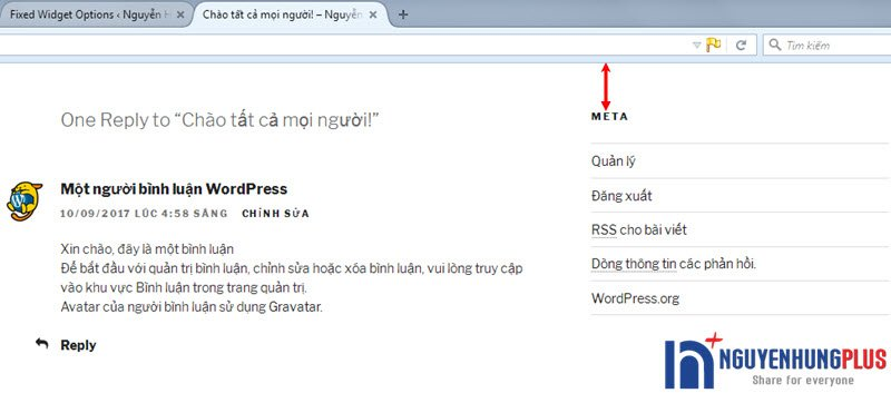 huong-dan-tao-widget-co-dinh-cho-wordpress-bang-plugin-2
