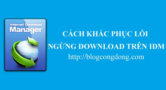 cach-download-tiep-tuc-khi-idm-ngung-download-giua-chung