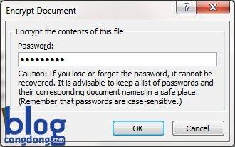cach-khoa-mat-khau-password-cho-file-excel-va-word-2