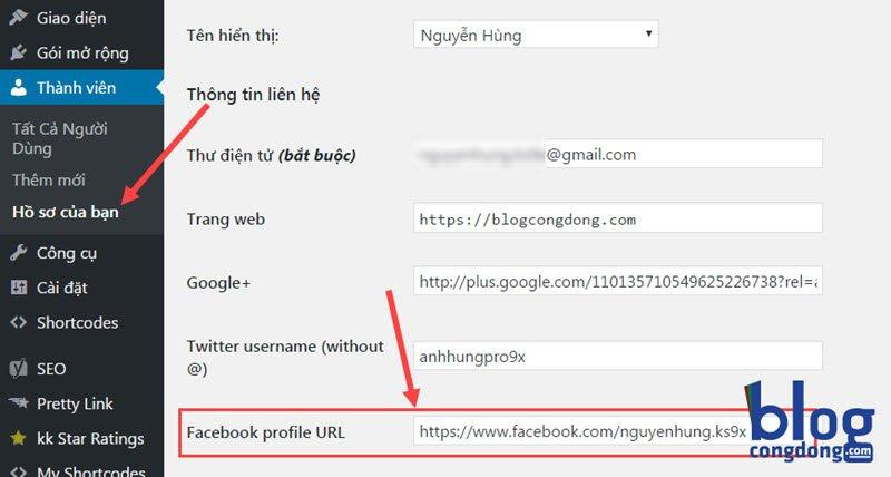 huong-dan-cai-dat-facebook-insights-cho-wordpress-de-hien-thi-nut-xem-tren-facebook-2